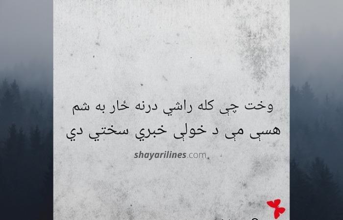 pashto shayari dosti for friends and gf bf
