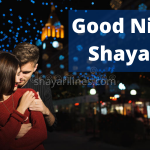 *TOP* 35+ Good Night Shayari In Hindi (Poetry Images, Status, Quotes, SMS)