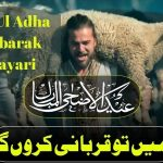 [44]+ Eid Ul Adha Mubarak Shayari in Urdu 2021 (Poetry, Images, SMS)