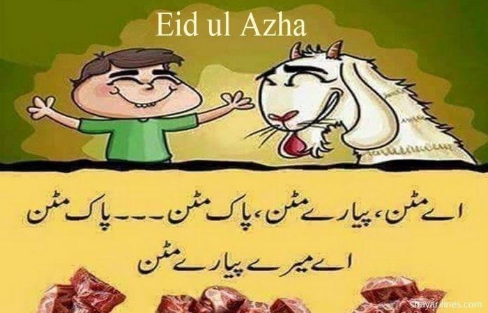 Urdu sms images photos massages wallpaper dpz