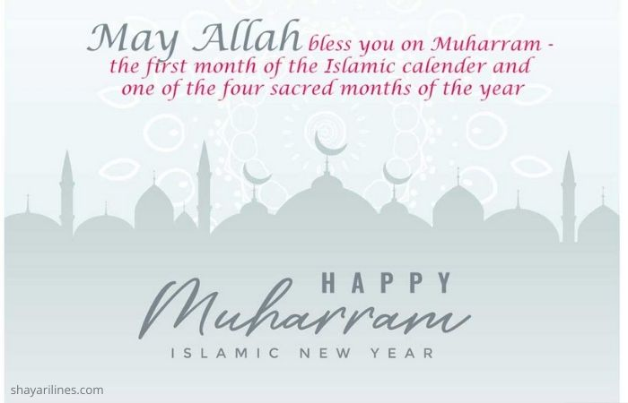 Happy new year Mubarak day sms images photos massages wallpaper dpz